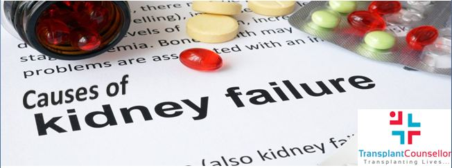 Causes of kidney failure